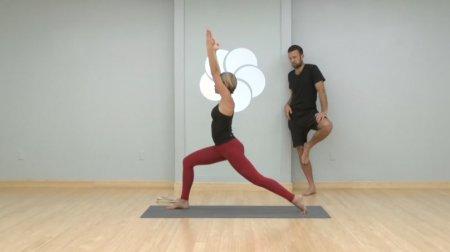 Комплекс йоги выводящий токсины / Yoga Detox - Level 3