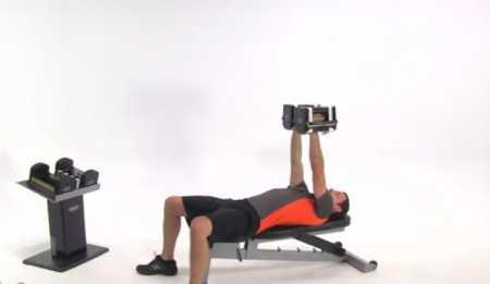 Силовые упражнения для верхней части тела / Upper Body Dumbbell Workout