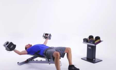 Домашняя силовая тренировка верхней части тела / At Home Upper Body Strength Workout